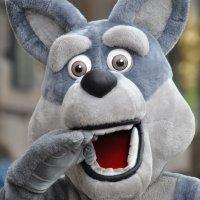 Заяц или мышь, так и не понял! :: Антоха Л
