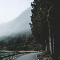 дорога в сумерки :: Алёна Осипова