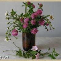 Июньский букетик цветов :: OLLES