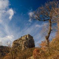 Зимний горный Крым :: Uliya