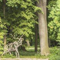 Вернись, лесной олень, по моему хотенью :: bajguz igor