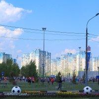 Нижний встречает футбол :: Татьяна Ломтева