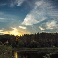 Взор волчицы на закат :: Александр Попович