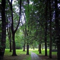 Вечер в парке :: Александр Сапунов