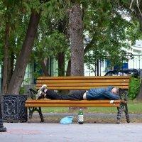 Из жизни отдыхающих. :: Михаил Столяров