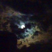 Полночь. Полнолуние.Луна пробивается сквоэь тучи :: татьяна