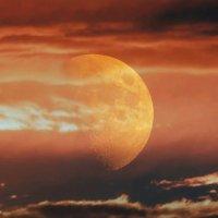 Марсианские фантазии :: Ирина Via