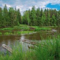река Тагил, то, что осталось от моста :: Александр Катаев