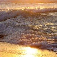 Золотое море :: Ефим Журбин