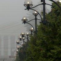 Про фонари и туман. :: Анатолий. Chesnavik.