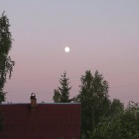 Белые ночи. :: Ирина ***