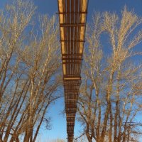 Мост через реку Большой Кинель. Зима. :: Наталья Ильина