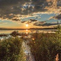 утром на озере :: Василий И Иваненко