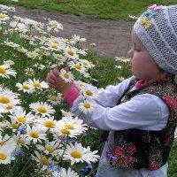 Девочка и ромашки . :: Мила Бовкун