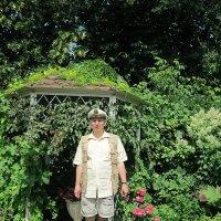 Лето в Тимирязевке :: Дмитрий Никитин