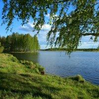 Чуть слышно шепчется листва... :: Нэля Лысенко