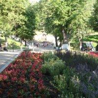 В Струковском саду :: марина ковшова