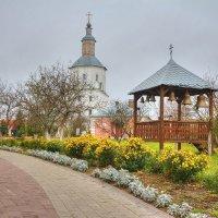 Свенский монастырь :: Константин