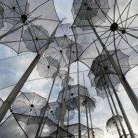зонтики :: Vasiliy V. Rechevskiy
