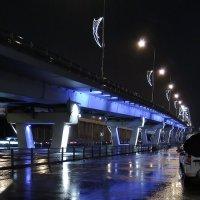 Ночной Адлер :: Анастасия Климова