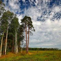img_3656 :: Сергей Козлов