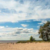 Холодное лето (1) :: Виталий