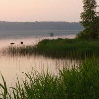 Рыбалка в розовом закате... :: Нэля Лысенко