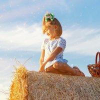 девочка на стоге сена :: Александр Заяц
