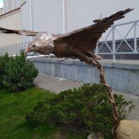 Скульптура орла на площади у ратуши, г. Минск :: Tamara *