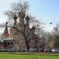 силуэты весны и веры :: Олег Лукьянов