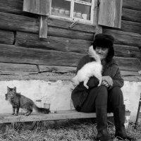 Посиделки :: Светлана Рябова-Шатунова