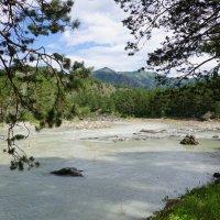 Река Катунь :: Наталия Григорьева