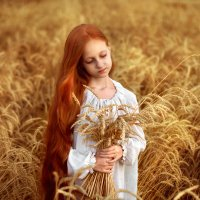 Поля в поле :: Екатерина Краснова