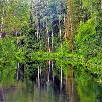 В глубине старинного Парка... :: Sergey Gordoff