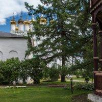 В Иосифо-Волоцком монастыре. :: Владимир Безбородов