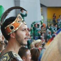 Футбол - это жизнь! :: Лана Коробейникова