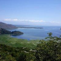 Фантастические ландшафты Скадарского озера :: Tatiana Belyatskaya