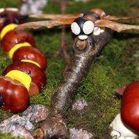 Стрекоза и гусеница из каштанов, желудей, ясенелистного клёна и пластилина :: Dmitry Saltykov