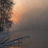 Розовое утро :: Наталия Женишек
