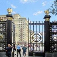 Ворота Александовского сада :: Алла Захарова
