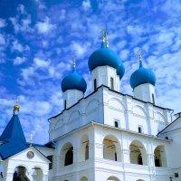 Мужской монастырь в Серпухове :: Ольга