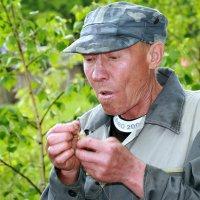 Букашечки-таракашечки... :: Евгений Юрков