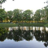 Летний сад/ Карпиев пруд :: Наталья Герасимова