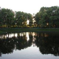 Летний сад. Карпиев пруд :: Наталья Герасимова