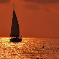 морская прогулка :: Sergey