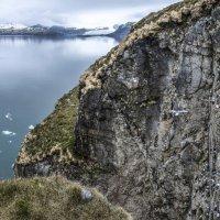 узкие вертикальные скалы на которых живут моевки с тремя лапками :: Георгий А