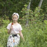 прогулка по лесу :: Светлана Бурлина