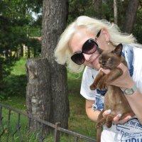 Женщина и кошка. :: Лариса Вишневская