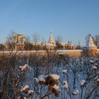 Можайский Лужецкий Ферапонтов Богородицкий мужской монастырь зимой. :: ИРЭН@ .
