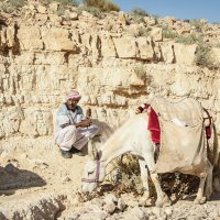 Бедуин :: Tatyana Belova